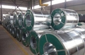Galvanized steel coils 7