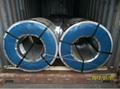 Prepainted galvanized steel coils 17