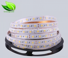 5050 led strip 60leds/m DC12V IP67 with silicon tube
