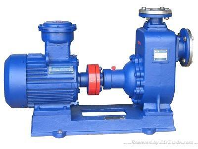 河北泊头CYZ自吸式离心泵 1