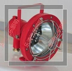 DGS20/127L(A) 井底照明