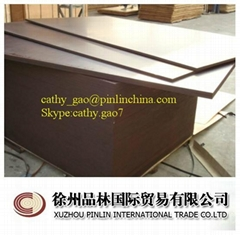 Film faced plywood shuttering plywood