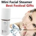 Cheap Price Mini Face steamer  Nano facial mist Sprayer Cold Handy facial mist
