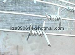 IOWA MOTTO PUMA type barbed wire mesh fencing