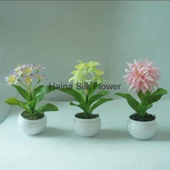 Hot selling mini potted artificial flower/spring flower series