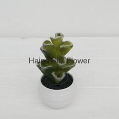 High quality artificial plants plastic