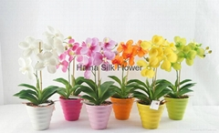 Artificial flowers orchi