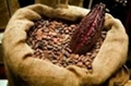 ARABICA AND ROBUSTA COFFEE BEANS, COCOA BEANS , COCOA POWDER 4