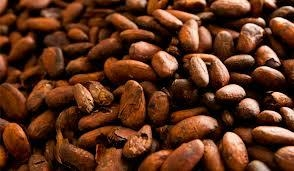 ARABICA AND ROBUSTA COFFEE BEANS, COCOA BEANS , COCOA POWDER 5