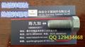高強度熱鍍鋅螺栓