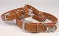 Bing PU leather dog collar