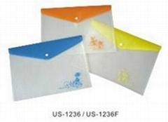 PP Color Printed File Bag