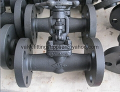 Flange and the welding globe valves