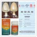 γ-氨基丁酸 GABA