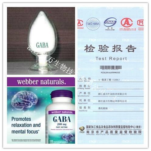 伽马氨基丁酸 GABA 2