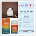伽马氨基丁酸 GABA 4