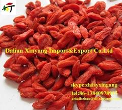 100% Ningxia organic  dried goji berries