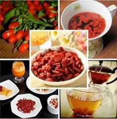 High quality dried raw goji berries