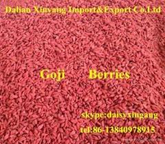 Wholesale price Ningxia dried goji berry