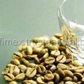 BEST PRICE HIGH QUALITY Vietnam ROBUSTA