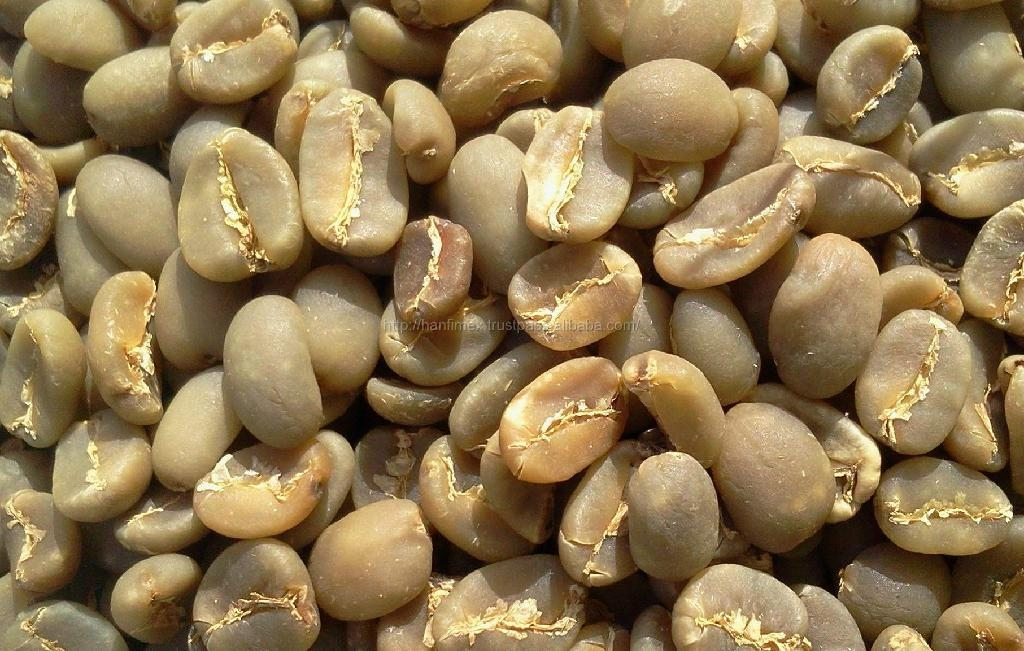 BEST PRICE HIGH QUALITY Vietnam ROBUSTA COFFEE BEANS 5