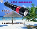 Mobile power double light zoom torch