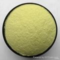 Ferrous Gluconate Food Grade