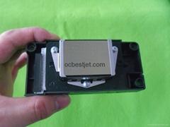 new DX5 gold print head for EpsonR1900   R2000  R2880 4880 R2400,oil  based