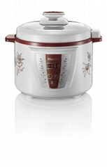 Electric Pressure Cooker With Color  Body