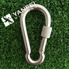 DIN5299D Stainless Steel Spring Snap Hook With Eyelet