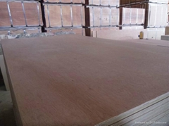 high quality best commercial plywood