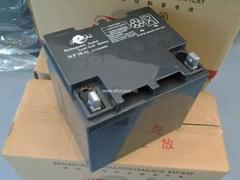 电狐蓄电池12v100ah