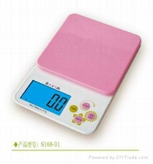 Household scale