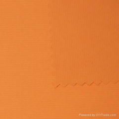 NYLON/PU STRETCH FABRIC (SJ-2041)