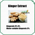 Ginger Extract Gingerols