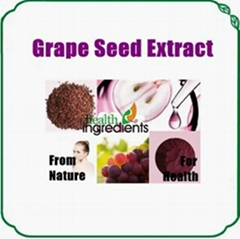 Grape Seed Extract Polyphenols & OPC
