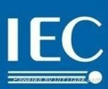 Provide Electric blanket  IEC TEST REPORT