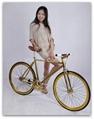 WSFG-0006-0007 Golden Si  er