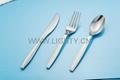 Plastic Si  er Cutlery