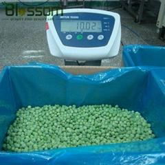 Frozen green pea IQF green pea  Grade A