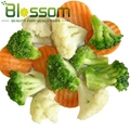 Frozen mixed vegetables IQF mixed vegetables 3