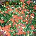 Frozen mixed vegetables IQF mixed vegetables 4