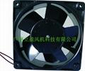 双电压选择DVB铁叶风扇