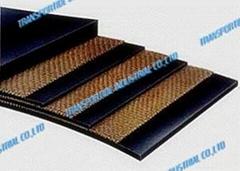 Multi-piled conveyor belt