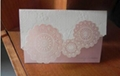 Greeting card hollow out of CO2 laser engraving machine carving 3
