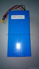 安徽大奥磷酸铁锂电池