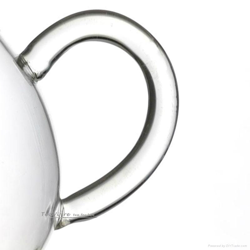 Double wall glass teapot  4