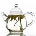 Double wall glass teapot  1