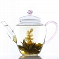Double wall glass teapot  for flower