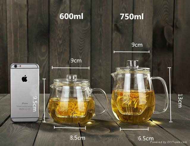 Glass teapot to boil water 5